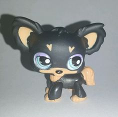 Littlest Pet Shop Brown Chihuahua Dog Blue Eyes #1571 Preowned LPS in Toys & Hobbies, Preschool Toys & Pretend Play, Littlest Pet Shop | eBay