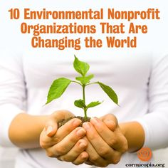 "Mother Earth News Magazine recognizes The Cornucopia Institute in their piece: ""10 Environmental Nonprofit Organizations That Are Changing the World."" Read more: http://www.cornucopia.org/2014/06/10-environmental-nonprofit-organizations-changing-world"