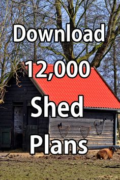 Get Instant Access to Shed Plans