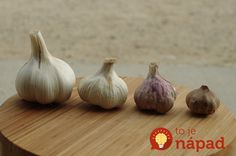 Garlic - the King of Companion Planting - Garden Myths Garlic Juice, Raw Garlic, Fresh Garlic, Purple Garlic, Acne Treatment At Home, How To Store Garlic, Home Remedies For Pimples, Acne And Pimples, Gardens