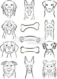 Illustration of the face of the dog