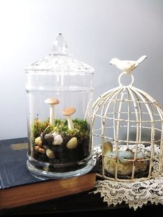 apothecary terrarium.