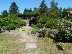 Borová hora - Arborétum 9