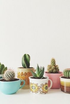 Cacti and coffee mugs, our two favorite things.