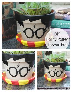 Harry Potter Flower Pot