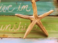 DIY starfish out of airdry clay - perfect!!
