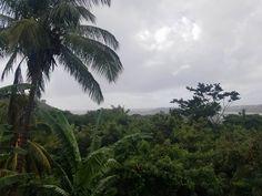 Rainy Day. Westerhall Grenada. [2592x1944][OC] http://ift.tt/2EK3oM1