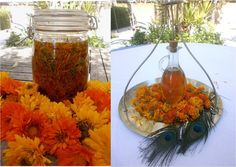 Calendula oil. Left: freshly dried calendula flowers infusing in almond oil. Right: after 3 weeks of sunshine the finished product. An excellent soothing anti-inflammatory, antiseptic, antifungal and antibacterial oil suitable for eczema, allergic skin rashes, dermatitis, dry and chapped skin. Liquid gold! :-)