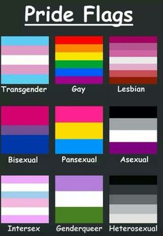 WHERE'S MY OTHER FLAG, DEMISEXUAL?