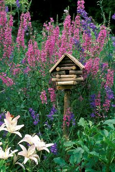 Log birdhouse with blooming lythrum, lilies, and larkspur.