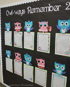 "Write about what you'll 'owl ways"" remember!"