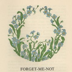 A Wreath Of Flower Legends Written in the 1950's by Rose Sydenham Dugdale it includes flower legends from all over the world and beautiful 'Flower Wreaths' illustrated by L Anne Ellis.