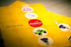 Nova marca, identidade visual e folheteria para a importadora Maluvan.