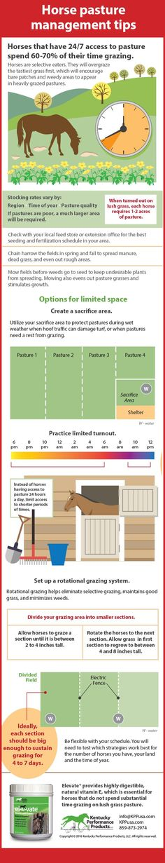 Infographic courtesy of Kentucky Performance Products