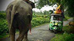 rickshaw run in india Vespa, Namaste, Travel Competitions, India Asia, Ends Of The Earth, Largest Countries, I Want To Travel, Go Fund Me, Adventure Is Out There
