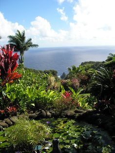 The Garden of Eden. On the Road to Hana, Maui. Aptly named!