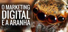 O marketing digital e a aranha