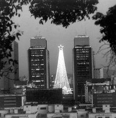 Navidades Caraqueñas en los años 80s:arbol de navidad en las torres del centro Simon Bolivar,Caracas.