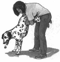 helping a choking dog