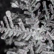 I am just fascinated by snowflakes! When looking for a snowflake wallpaper for my computer screen, I came across this photographer who takes amazing photos of them... check them out!