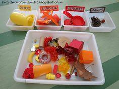 EDUCACIÓ INFANTIL : CLASSIFIQUEM TARDOR Mexican, Breakfast, Ethnic Recipes, Montessori, Food, Autumn, School, Proposals, Reading