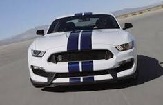 Image result for wicked mustangs