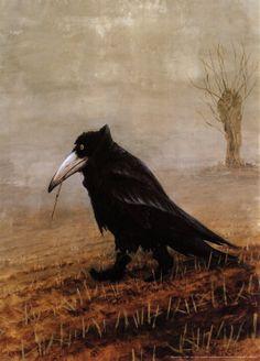 """""""die krahe""""/the crow"""