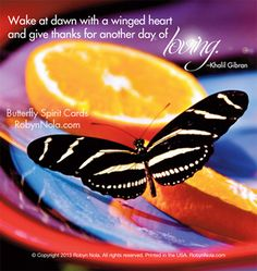 """Wake at dawn with a winged heart and give thanks for another day of loving."" –Kahlil Gibran #butterfly #quotes #nature"