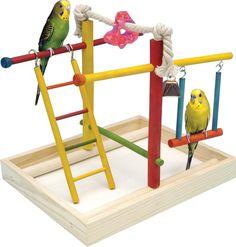 Penn Plax Wood Bird Playpen: Bird Activity Center for Small Birds Parrot Perch, Bird Perch, Bird Play Gym, Parakeet Toys, Parakeet Care, Pet Bird Cage, Bird Stand, Parrot Toys, Cockatiel