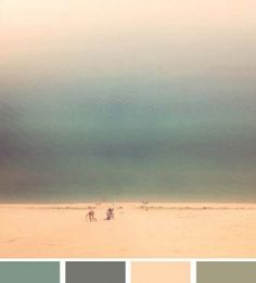 Potential color palate?