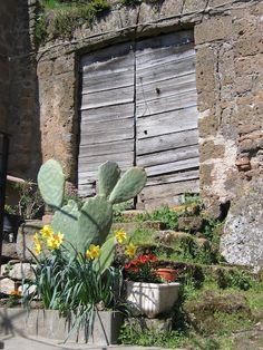 cantina door, N. lazio