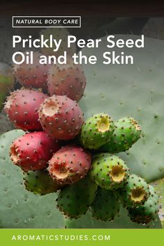 Prickly Pear Seed Oil and the Skin Prickly Pear Syrup Recipe, Prickly Pear Recipes, Health Benefits, Prickly Pear Jelly, Prickley Pear, Natural Deodorant, Seed Oil, Gardens
