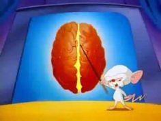Partes del cerebro animado - Pinky y Cerebro