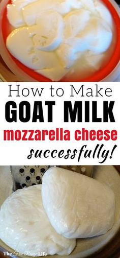 Milk Mozzarella Making cheese with goat milk can be trickier than cow milk. Learn how to make goat milk mozzarella cheese successfully!Making cheese with goat milk can be trickier than cow milk. Learn how to make goat milk mozzarella cheese successfully! Goat Milk Recipes, Goat Cheese Recipes, Goat Milk Mozzarella Recipe, How To Make Cheese, Food To Make, Making Cheese, Fromage Vegan, Goat Farming, Homemade Cheese