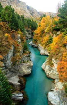 Outside Queenstown, Otago, New Zealand #NewZealand #Autumn #Mobissimo #Otago #cheapflights http://www.mobissimo.com/airline-tickets/cheap-flights-to-new-zealand.html