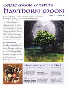 Hawthorn Moon: May 13 - June 9 Moon: Celtic Months: Hawthorn Moon. Beltane, Celtic Astrology, Tarot, Wicca Witchcraft, Celtic Tree, Moon Magic, Sabbats, Magic Spells, All Nature