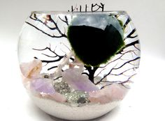 MARIMO GIVEAWAY ! Please enter www.eclecticzenmarimo.com for a chance to win a beautiful marimo terrarium free!!!