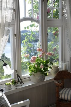 Amazing window!