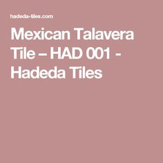 Mexican Talavera Tile – HAD 001 - Hadeda Tiles