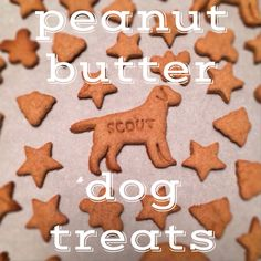 Homemade Dog Treats, Peanut Butter - The Cookie Rookie