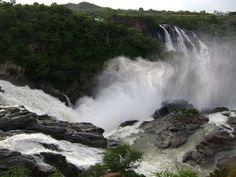 Bandipur National Park - UNESCO World Heritage Site