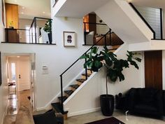 Interior custom cable railing designed, fabricated and installed by Capozzoli Stairworks. Stainless Steel Cable Railing, Commercial, Stairs, Philadelphia Pa, Railings, Contemporary, Interior, Dan, Design