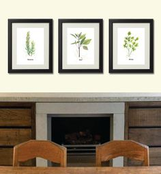 Set of 3 Herbs Print. 8x10 inch each. Art Print from my original watercolor painting. Home or kitchen wall decor. Gardening art. Food Print.... -- for Ashlee