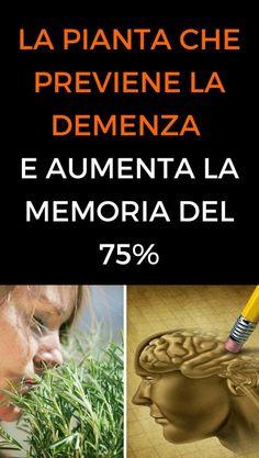 #rosmarino #memoria #demenza #salute #animanaturale