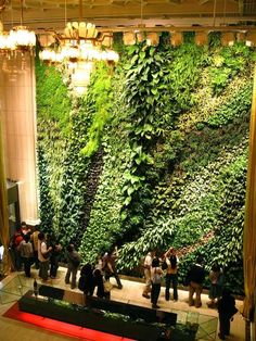 biophilic design at it's best. wonderful movement in this green wall