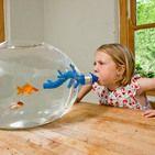 27 geekiest (and weirdest) fish tanks