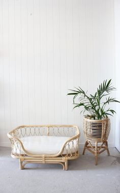 49 Adorable Tropical Leaf Decor Stylish Home Design Ideas Cute Dog Beds, Puppy Beds, Diy Dog Bed, Dog Beds For Small Dogs, Tropical Dog Beds, Rattan, Puppy Room, Cute Bedding, Pets