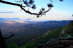 view from mt graham az - can't wait to visit G in AZ