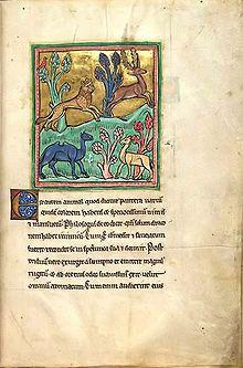 «El leopardo» del Bestiario de Rochester (siglo XIII).