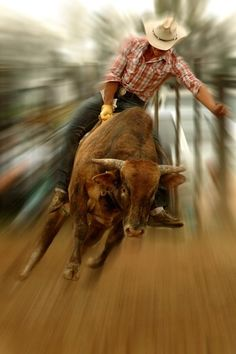 Hold on tight! #rodeo #cowboy..can't see his face but I still find him attractive..lol